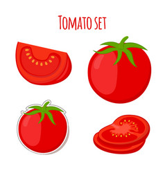 Tomato set made in cartoon flat style vector