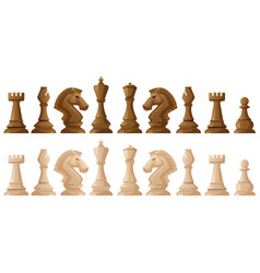 two colors of chess pieces vector image