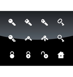 Key icons on black background vector image