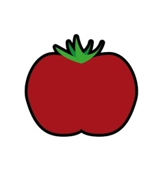 Tomato icon healthy and organic food vector