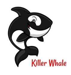 Cartoon black and white killer whale or orca vector image vector image