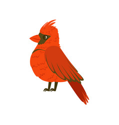 small bright red tropical bird colorful vector image