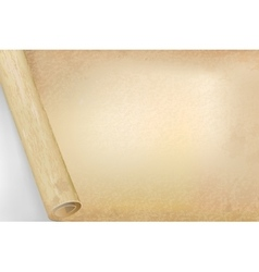 Vellum or papyrus opened scroll background vector image