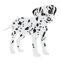 Dalmatians cute puppy sad vector