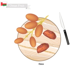 Dates fruit a popular fruit in oman vector