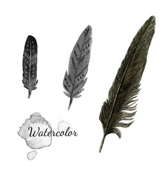 Watercolor feathers black feather of crow hand vector