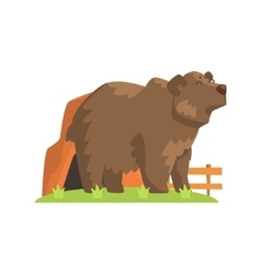 Brown Bear Coming Out Of Bear Den Standing On vector image