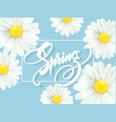 Calligraphic inscription hello spring with spring vector