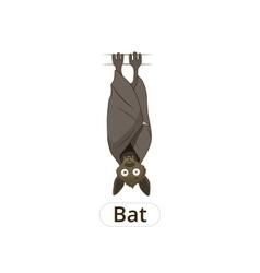 Forest animal bat cartoon vector image vector image
