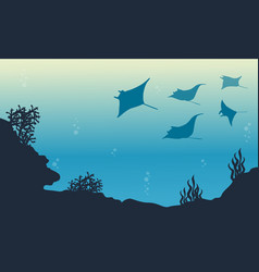 Silhouette of stingray and coral reef landscape vector