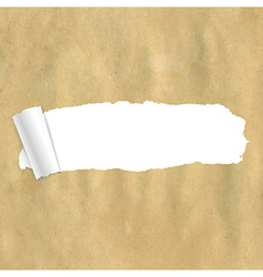 Package Paper Torn vector image