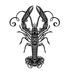 Ornate sea langoustine vector