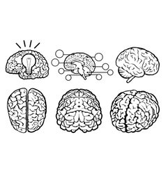 Human brain set vector