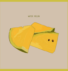 Yellow water melon sketch vector