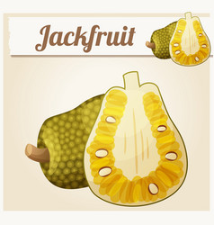 Jackfruit  cartoon icon vector