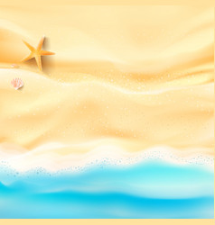 Abstract background sand and sea beach starfish vector