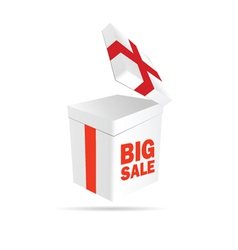 big sale sign on package color vector image vector image
