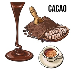 Pile of cocoa powder fruit hot chocolate cup and vector