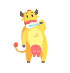 Cute cartoon cow brushing teeth with tooth brush vector