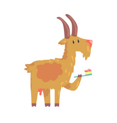 Cute cartoon goat brushing teeth with tooth brush vector