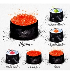 Sushi watercolor maki vector