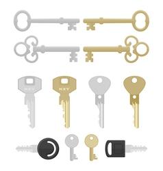 twelve keys vector image