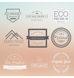Organic label badge vector