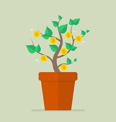 Money plant flat icon vector