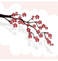 Branch of cherry blossoms sakura with burgundy vector