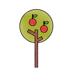 Apple tree isolated icon vector