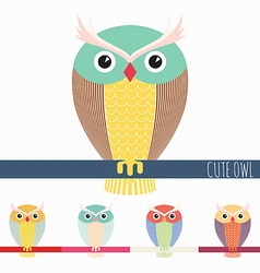 Cute colorful owl vector image