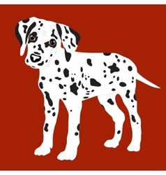 Dalmatians cute puppy sad vector