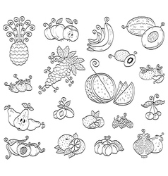 Doodle fruits and berries vector