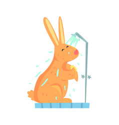 Cute cartoon bunny rubbing himself a foam sponge vector