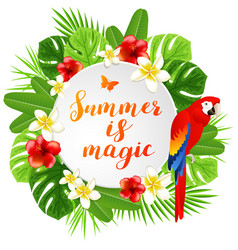 Summer banner with parrot vector