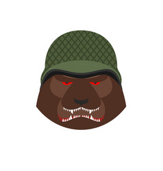 Angry bear in military helmet aggressive grizzly vector