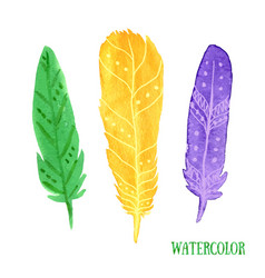 Hand painted watercolor feathers closeup isolated vector