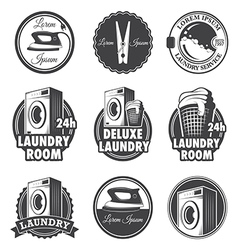 Laundry emblems vector