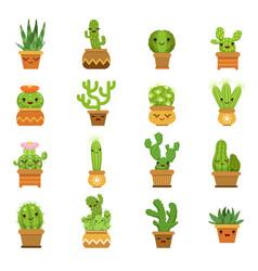 cute desert plants cactus in pots cartoon vector image