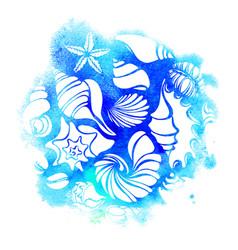 Seashells sea aqua vector