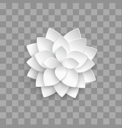 white paper 3d lotus isolated on transparent vector image
