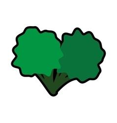 Broccoli icon healthy and organic food vector