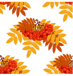 autumn seamless pattern with rowan vector image