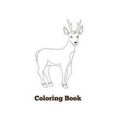 Coloring book forest animal roe deer cartoon vector