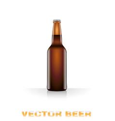 dark beer bottle vector image vector image