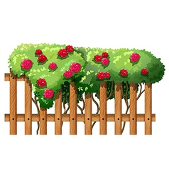 A flowering plant with a fence vector
