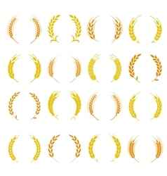 Wheat ear symbols for logo design vector image vector image