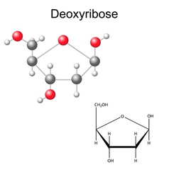 Structural chemical formula of deoxyribose vector