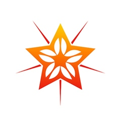 Star shine decorative abstract logo vector