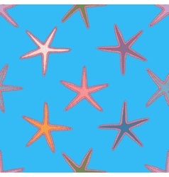Abstract seamless pattern with hand drawn starfish vector